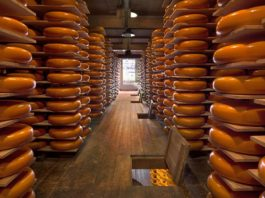 cheese valley