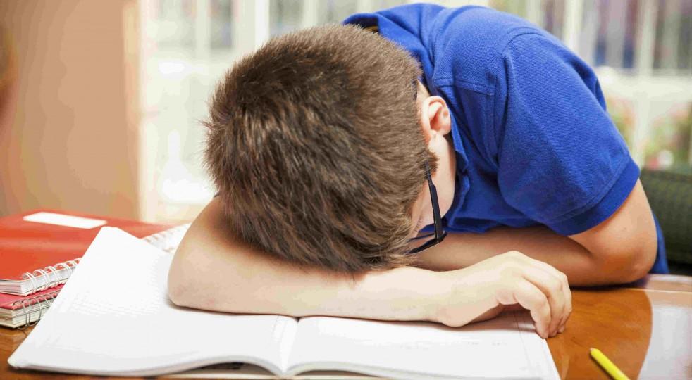 Quando i compiti per le vacanze di Natale fanno disperare i bambini... e le mamme!