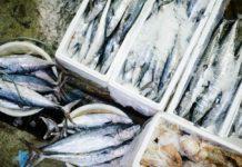 pesce ripieno al forno