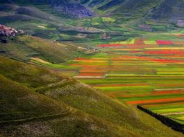 La Valle di Castelluccio di Norcia