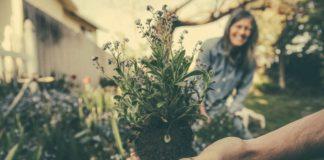 giardino primavera-estate