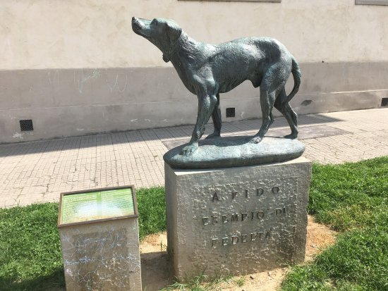 cane, Fido