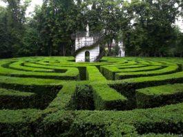 Il labirinto di Villa Pisani