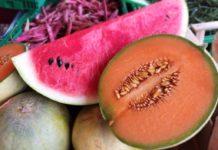 cocomero e melone quale scegliere per la dieta
