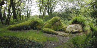 giardini perduti di heligan