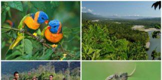 parco nazionale del manu