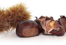 Bucce di castagne: un vero cosmetico naturale