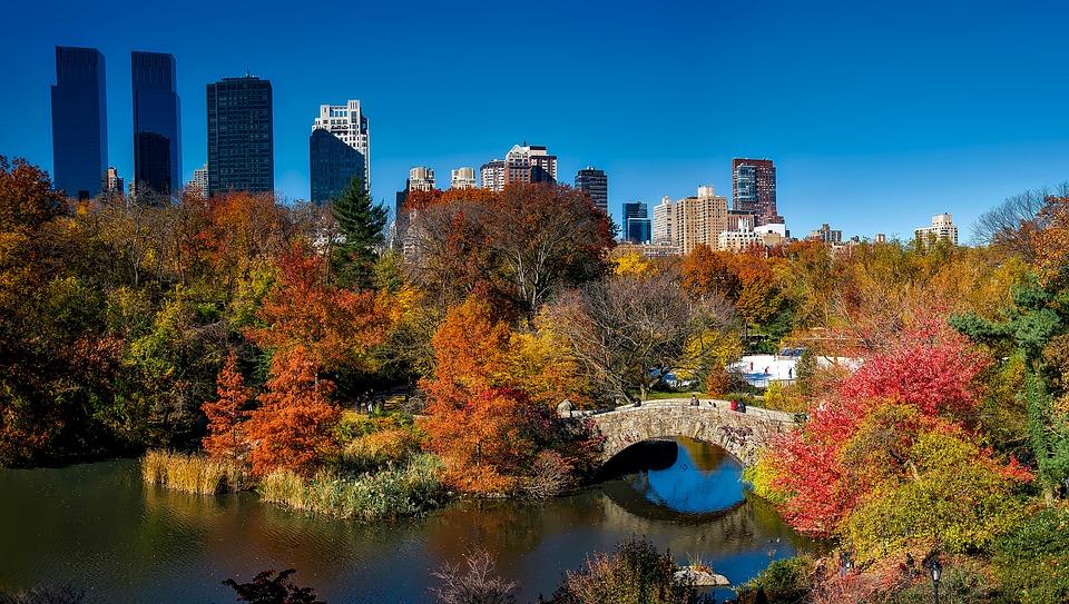 foliage d'autunno in città