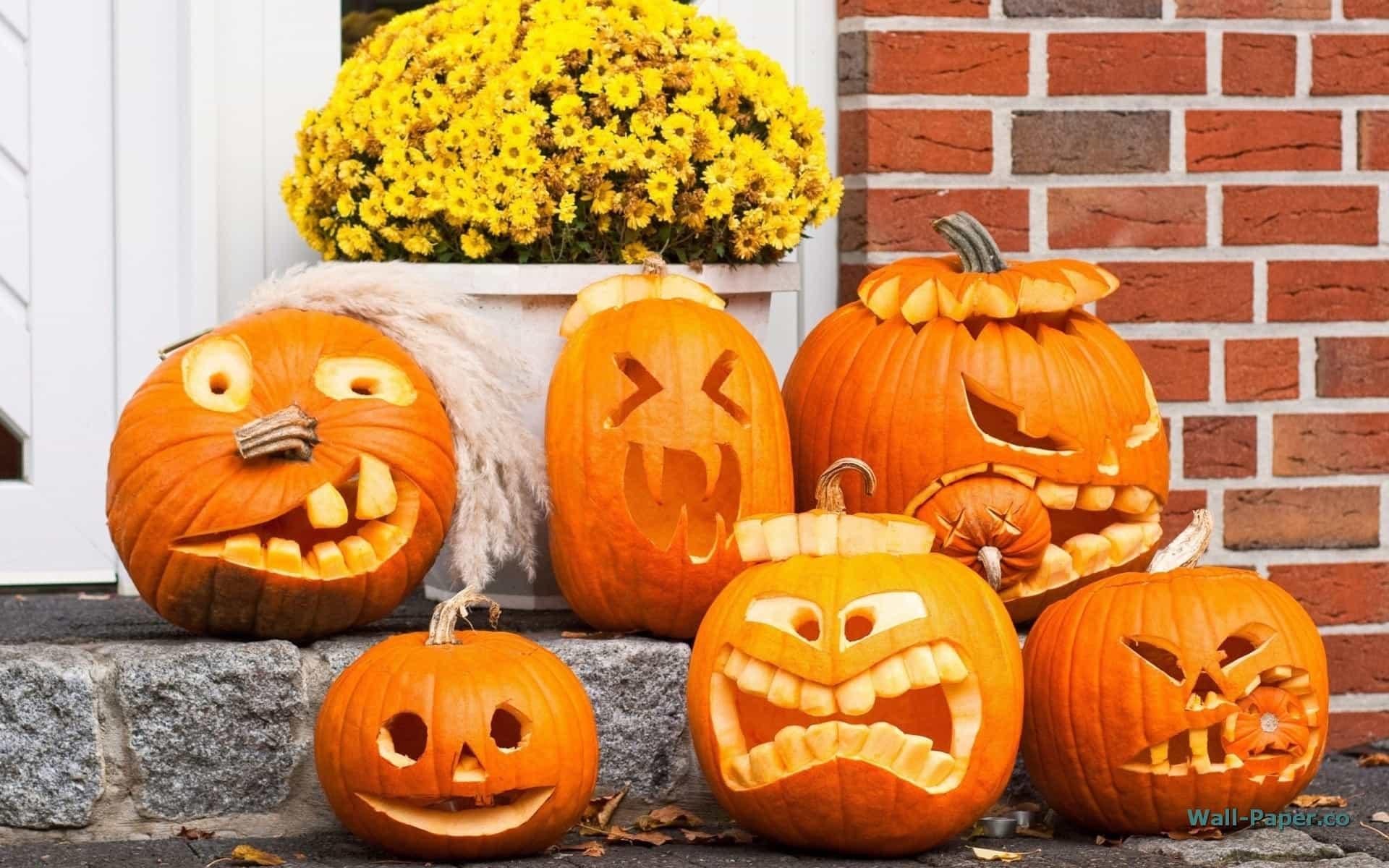 Come intagliare la zucca di Halloween con i bambini - Moondo 540d0cbe3eed