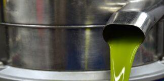 olio oliva e dna