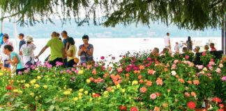 "presso il Lungolago di Salò torna ""Salò Garda Flowers"""