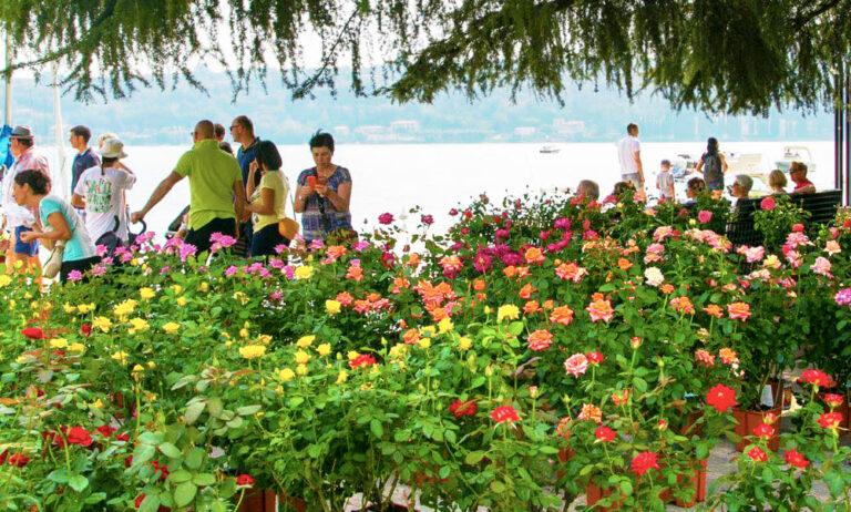 Salò Garda Flowers presso il Lungolago di Salò