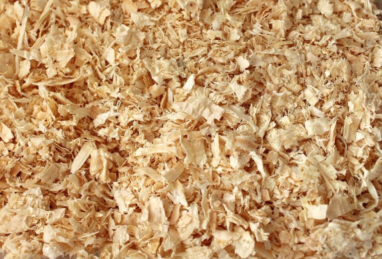 Trasformare gli scarti di legno in ingredienti farmaceutici a basso impatto ambientale