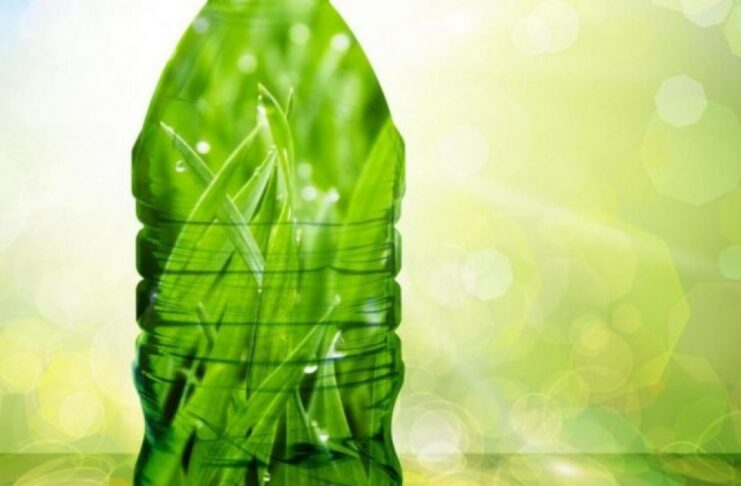 plastiche verdi