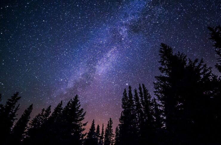 Rivedere le stelle